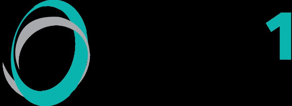 Type 1 Foundation